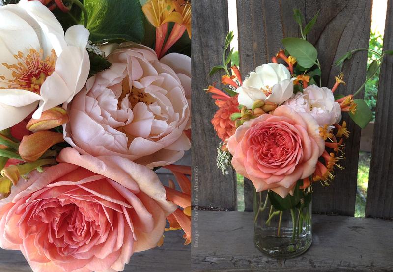English Roses~Jacqueline Du Pre  Geoff Hamilton & Abraham Darby
